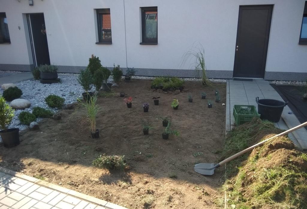 Začínáme osazovat rostliny