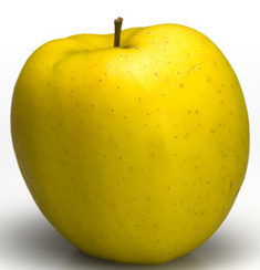 GOLDEN DELICIOUS- JABLOŇ